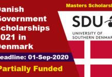 Danish Government Scholarships 2021 in Denmark