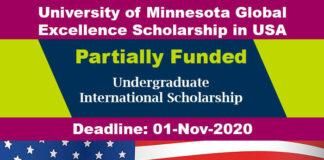 University of Minnesota Bachelors Scholarship 2020 in USA