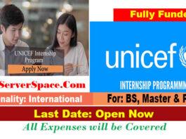 UNICEF Internship Program 2021 Worldwide [Fully Funded]