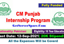CM Punjab Internship Program 2021 in Pakistan   20K Stipend
