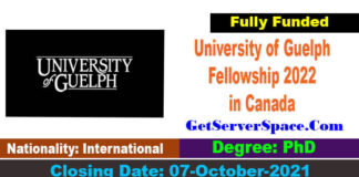 University of Guelph National Humanities Fellowship 2022 in Canada