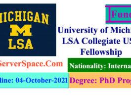 University of Michigan LSA Collegiate USA Fellowship 2021